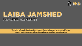 Toxicity of naphthenic acid extracts from oil sands process-affected water and  commercial mixtures in mammalian hepatocytes