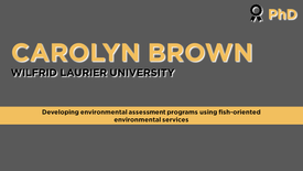Developing environmental assessment programs using fish-oriented environmental services