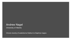 Chronic toxicity of waterborne thallium to Daphnia magna