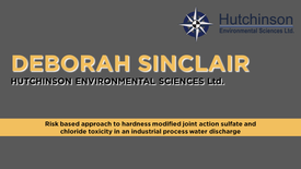 Risk Based Approach to Hardness Modified Joint Action Sulfate and Chloride Toxicity in an Industrial Process Water Discharge
