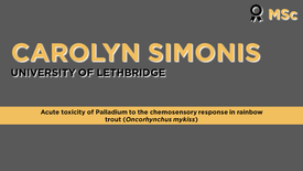 Acute Toxicity of Palladium to the Chemosensory Response in Rainbow Trout (Oncorhynchus mykiss)