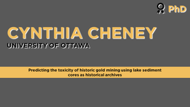 Predicting the toxicity of historic gold mining using lake sediment cores as historical archives