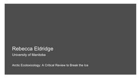 Arctic Ecotoxicology: A Critical Review to Break the Ice