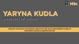 Impacts of pristine microplastic spheres to the larval (glochidium) stage of freshwater mussel Lampsilis fasciola