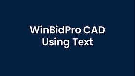 WinBidPro CAD Working with Text