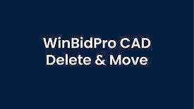 WinBidPro CAD Intro Delete and  Move