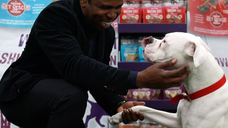 Simply Pets: CanPet Video