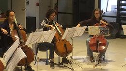 Atelier pratique collective - violoncelles