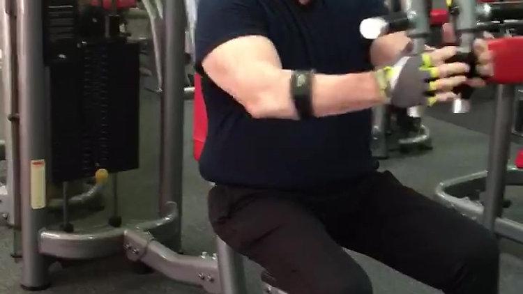 Seated Fly Machine
