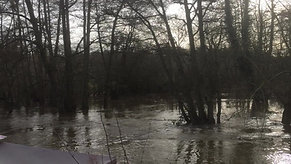 River after the storms - 18 Feb 2020