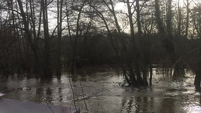 [3]  River Wey after Storm Dennis
