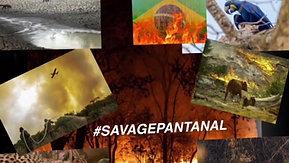 #SavePantanal
