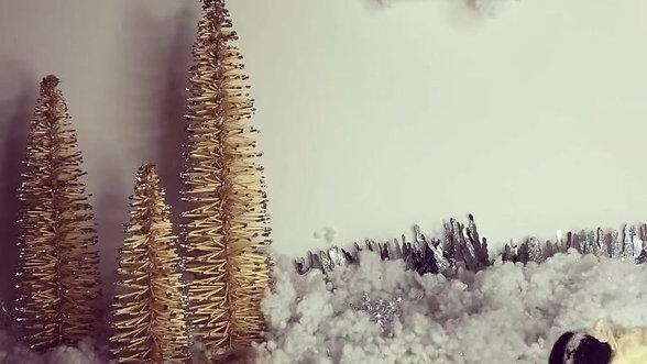 Winter Baa