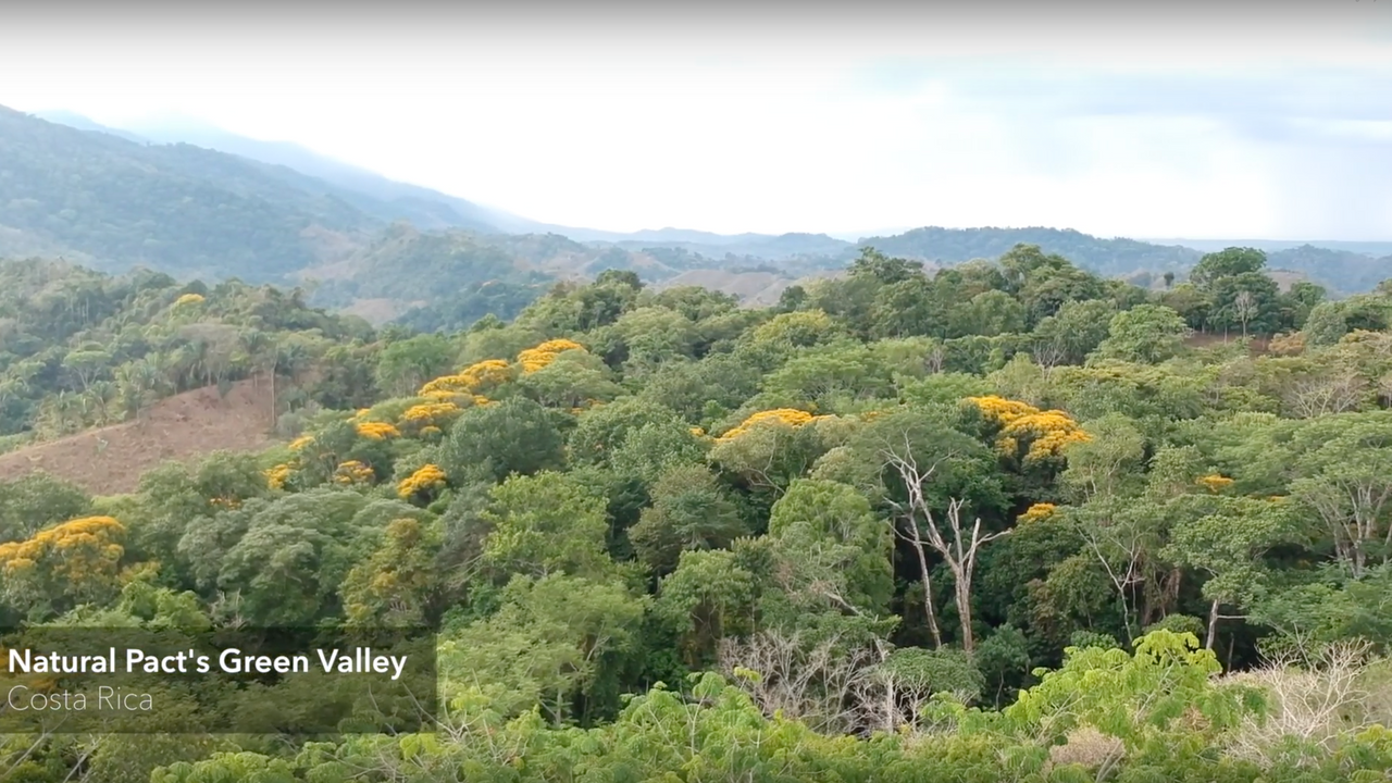 DISCOVER NATURAL PACT'S GREEN VALLEY !
