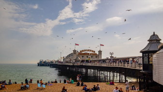 Brighton & Hove, Friends Of The Earth - Sustainable Tips From Jen