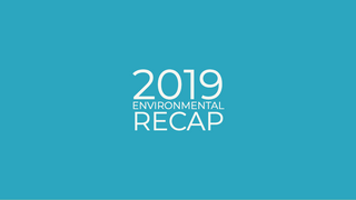2019 Environmental recap - The good things that happened!