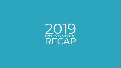 2019 Environmental recap - The good things that happened!