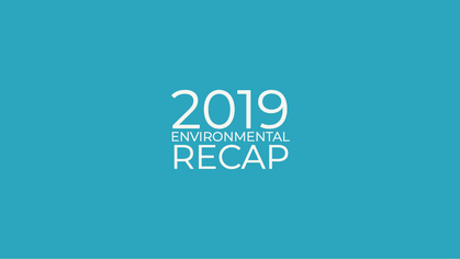 2019 Environmental recap - The not so good things
