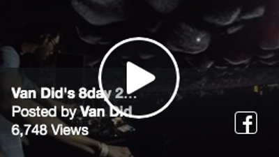 Van Did 8day 2018 Domesicle