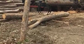 Log Loading