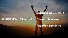 BusinessWise Intro