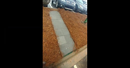 Charlotte Landscaping Services