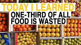 Today I Learned - Food Waste