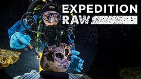 Expedition Raw - Underwater Skeleton