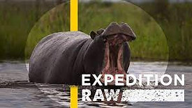 Expedition Raw - Close Call