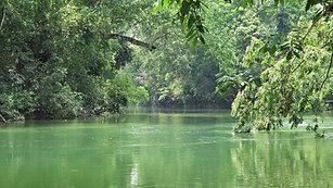 River Front Property Calla Creek, Cayo