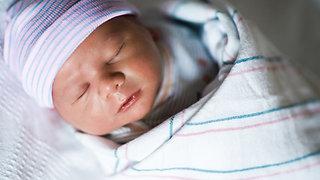 Newborn | Lifestyle | Fresh 48