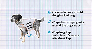 How to use the Thundershirt