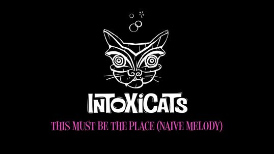 Intoxicats - Naive Melody