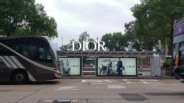Dior suitcase