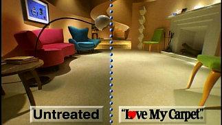Love My Carpet