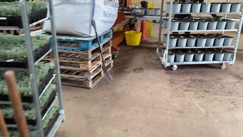 Plugging Trays and Potting 3 Litres