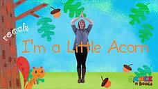 I'm a Little Acorn