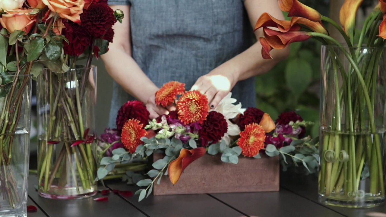 Mindy Rosenberg Design Brand Video