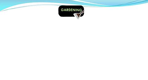 Raised Bed Gardens MCC