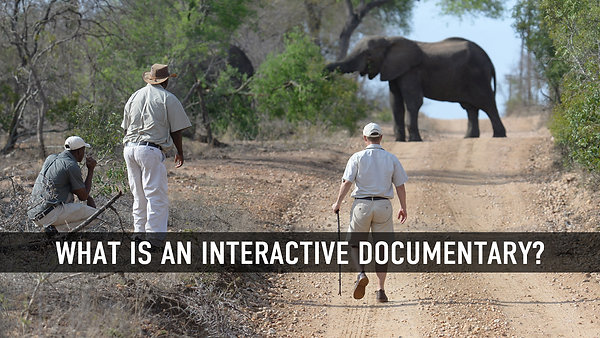 What is an interactive documentary?