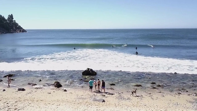 Experimenta_ Plancton, Bichitos en el mar