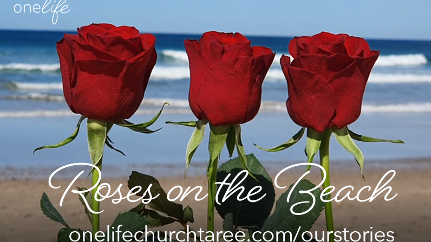 Three roses on the beach.