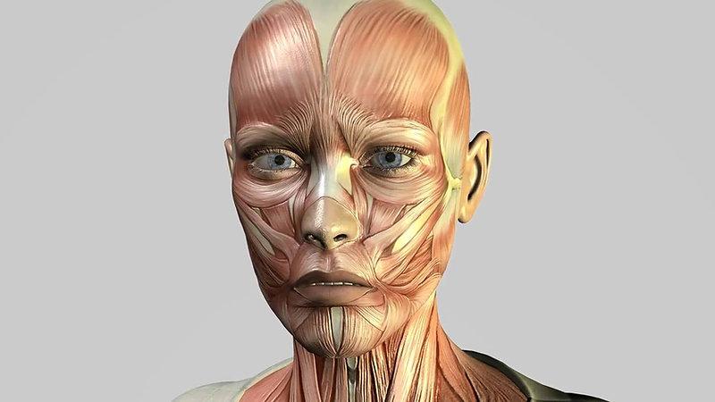 RP Aesthetics Botox FAQ's