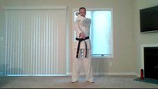 Karate 8.31.20 Catalin
