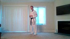 Karate 7.13.20 Catalin