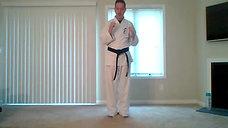 Karate 8.17.20 Catalin
