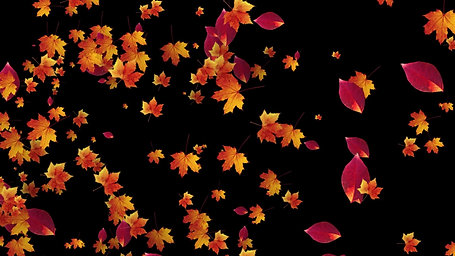 leafy autumn B3