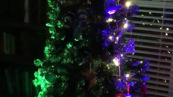 2016 Pixelmapped Tree