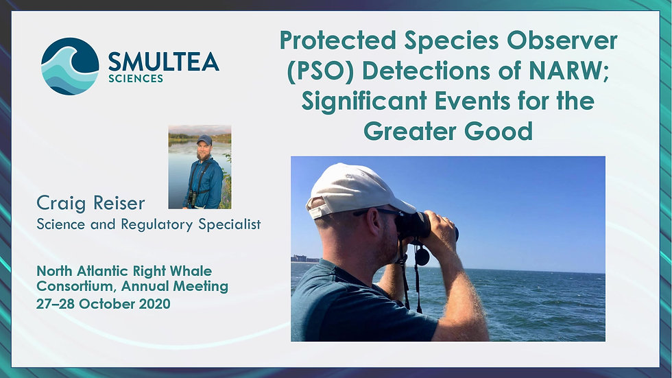 North Atlantic Right Whale Consortium 2020 - PSO Detections