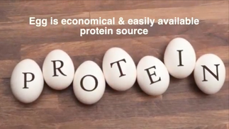 Egg Health Benefits Health Tips